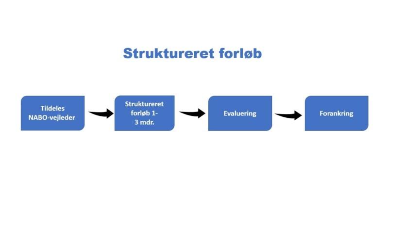 Struktureret forløb